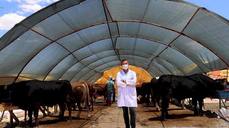 Bilim Kurulu üyesinden 'kurban pazarı' uyarısı