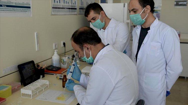 Türkiye'deki test kitleri bozuk mu? Sağlık Bakanlığı'ndan açıklama