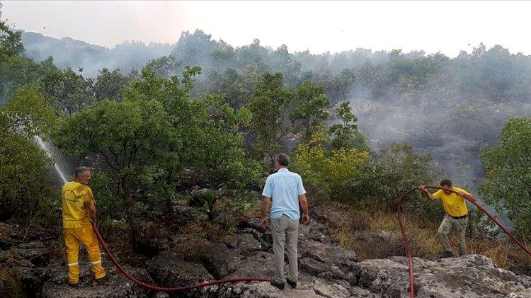 Diyarbakır Lice'de örtü yangını