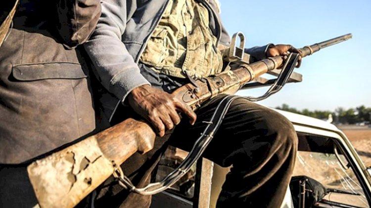 Nijerya'da geçen ay 80 silahlı çete üyesi öldürüldü
