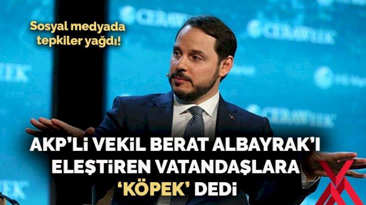 AKP'li vekil Berat Albayrak'ı eleştiren vatandaşlara 'köpek' dedi