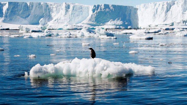 Grönland alarm veriyor!