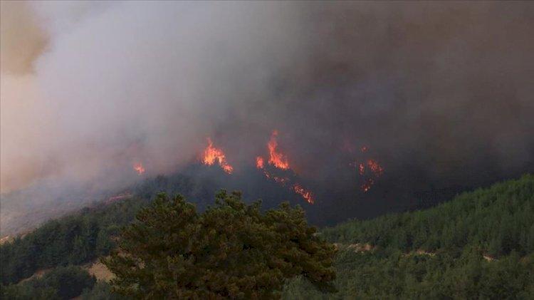 Adana'da orman yangını: 6 köy boşaltıldı, 800 ev tahliye edildi