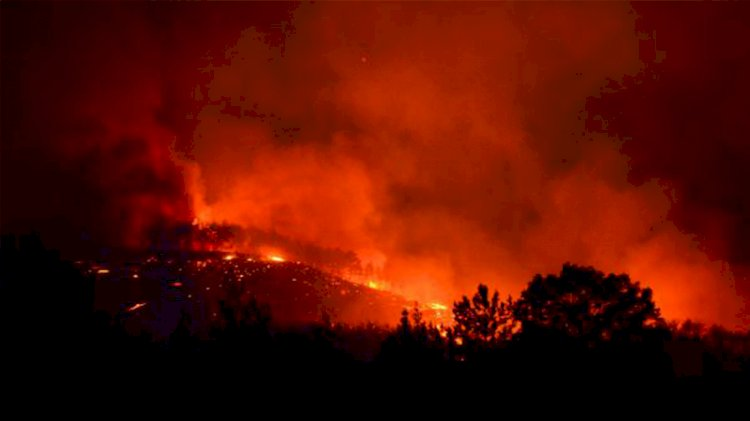 Kozan'da orman yangını ikinci gününde devam ediyor
