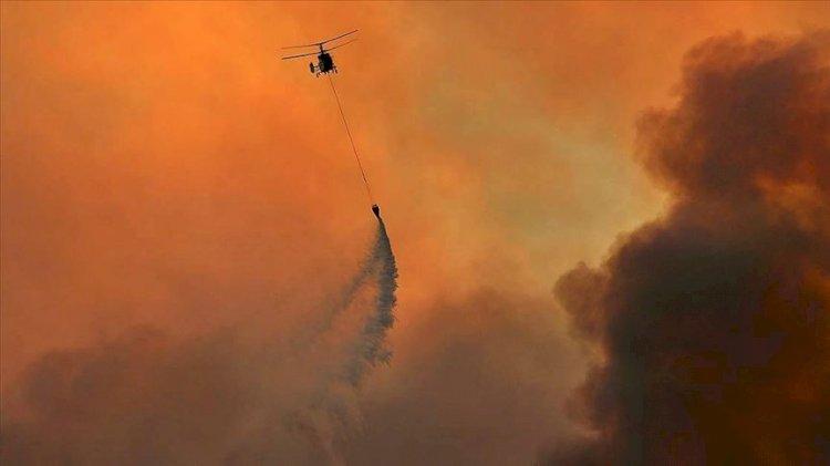 Adana Kozan'daki orman yangınıyla ilgili 3 gözaltı