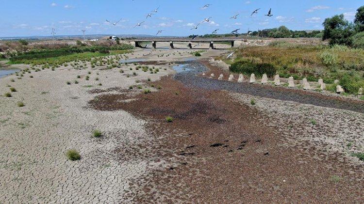 Büyükçekmece Gölü'nde korkutan görüntü: Sular çekildi