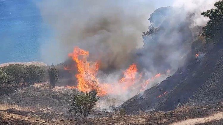 Silivri'de mangal yakan tatilci yangın çıkardı