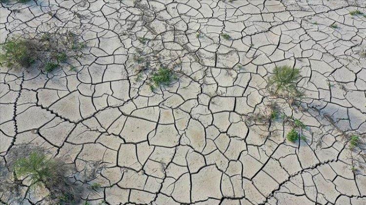 Uzmanlar rekor sıcaklıkları değerlendirdi: Son 5 yıl dünyanın en sıcak dönemi