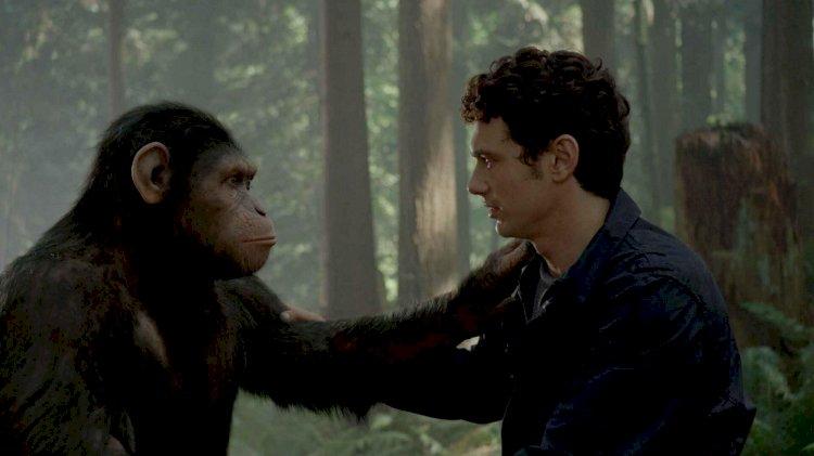 Maymunlar Cehennemi Başlangıç