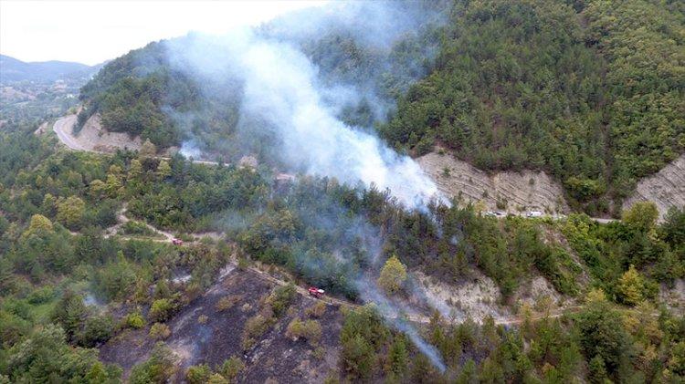 Otları temizlemek isterken, 20 hektarlık ormanı yaktı