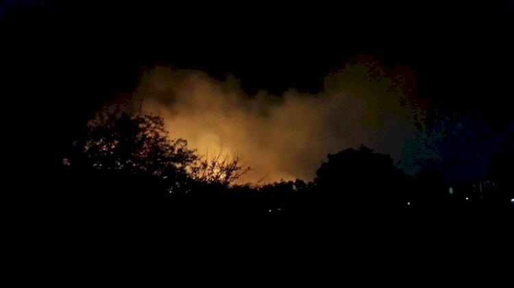 Ayvalık'taki orman yangınında son durum
