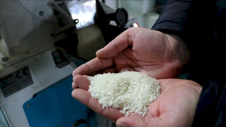 'Yerli' yazan paketten Yunan pirinci çıktı!