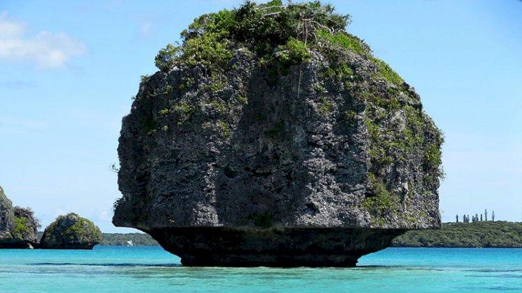 Dünyadaki nikelin yüzde 25'ine sahip ada ülkesinde bağımsızlık referandumu