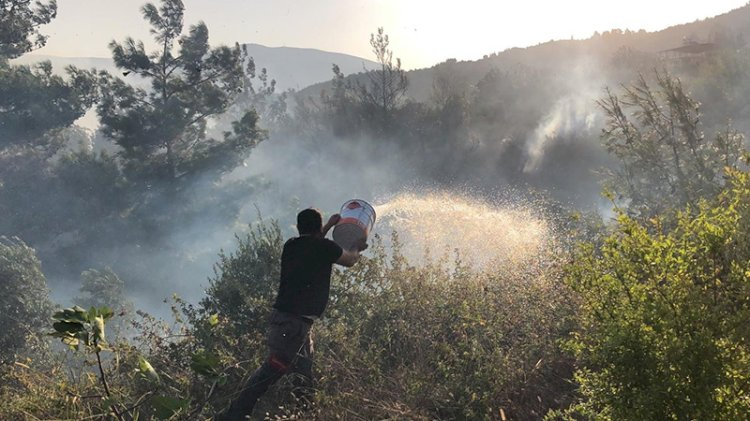 Hatay'da yerleşim yerine sıçrayan yangında son durum