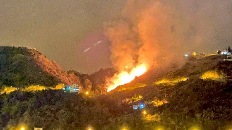 Trabzon'daki yangın kontrol altına alındı