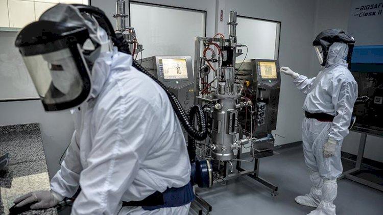 Yerli aşının üretildiği fabrikada son durum