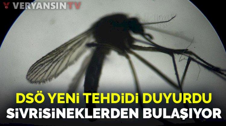 DSÖ yeni tehdidi duyurdu: Sivrisineklerden bulaşıyor