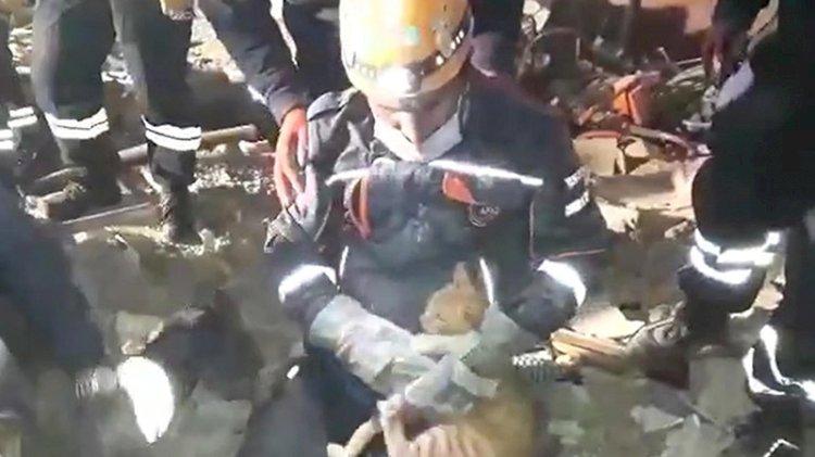 Enkaz altında kalan kedinin kurtarılma anı kameralarda