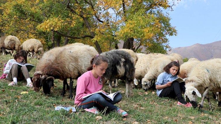 Hem koyun güdüp hem ders çalışan çocuklar internet ve tablet istiyor