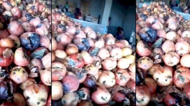 Çürük elmalar meyve suyu oluyor... 'Millet ne içtiğini görsün' videosuna bakanlıktan inceleme