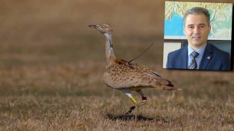 'Avcılık yasaklansın' diyenlere yaban hayatı profesöründen ilginç tepki