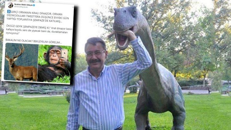 Dinozor, şempanze, geyik... Hayvanlar alemine dalan Gökçek kimlere mesaj gönderdi?