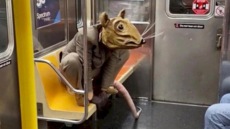 New York metrosunda ilginç görüntü!