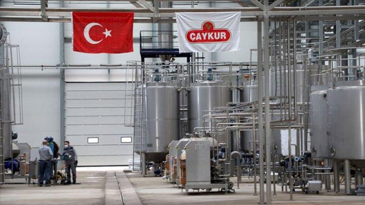 AKP'nin ÇAYKUR planı bu mu?