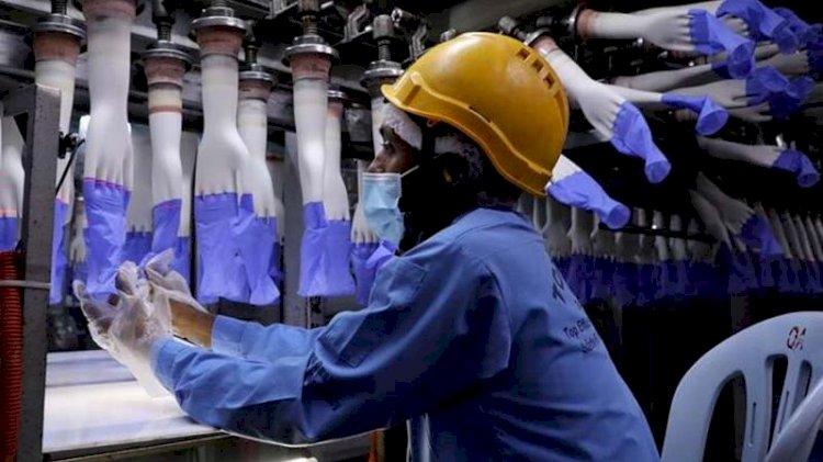 Eldiven üreten fabrikadaki 2500 işçi koronaya yakalandı