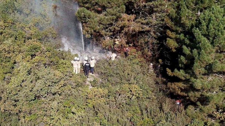 Ümraniye'de ormanlık alanda yangın