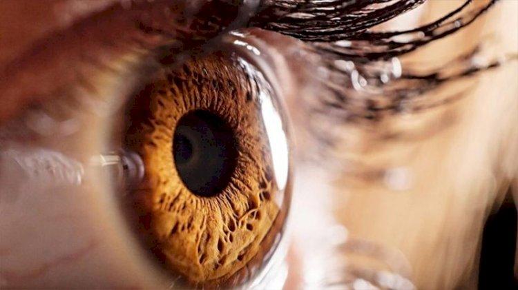 Görme engelli insanlar ne görürler?