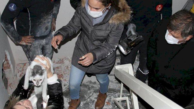 Deprem sonrası iki bina arasında sıkışan kedi 42 gün sonra kurtarıldı