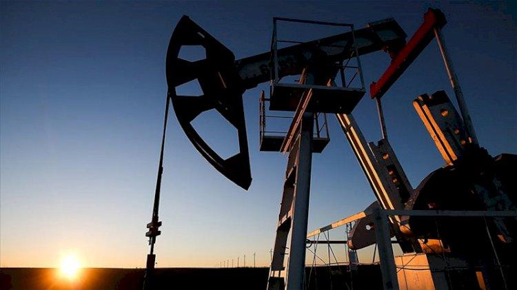 OPEC'ten '2021'de küresel petrol talebi artışta' açıklaması