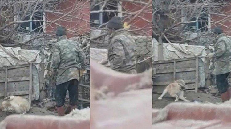 Beslediği köpeği sopayla döverken görüntülendi