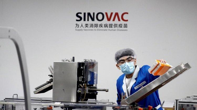 Sinovac'ın sitesine erişim engeli kaldırıldı