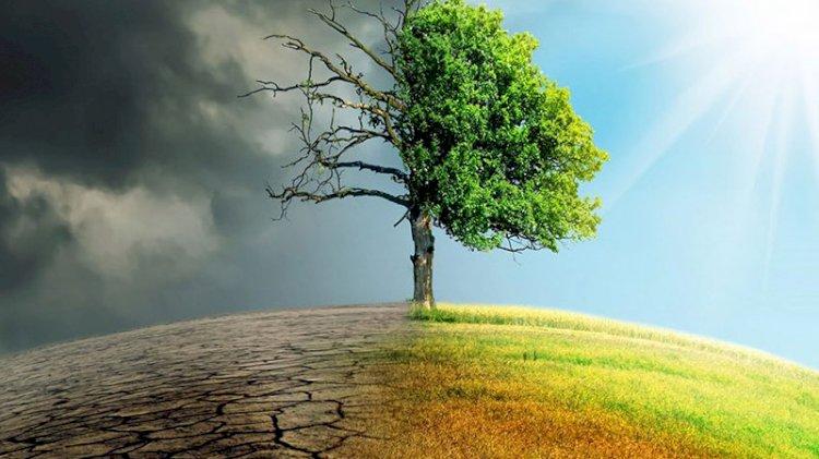 İklim kaynaklı felaketlerde rekor ölüm: 17 binden fazla...