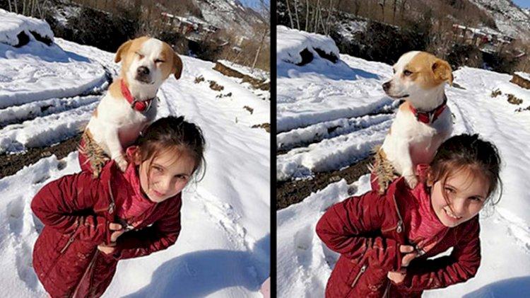Küçük Cemre'nin büyük yüreği... Hastalanan köpeğini sırtında veterinere götürdü