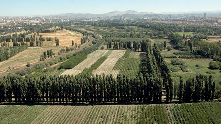 Atatürk Orman Çiftliği'nde gizli ihale