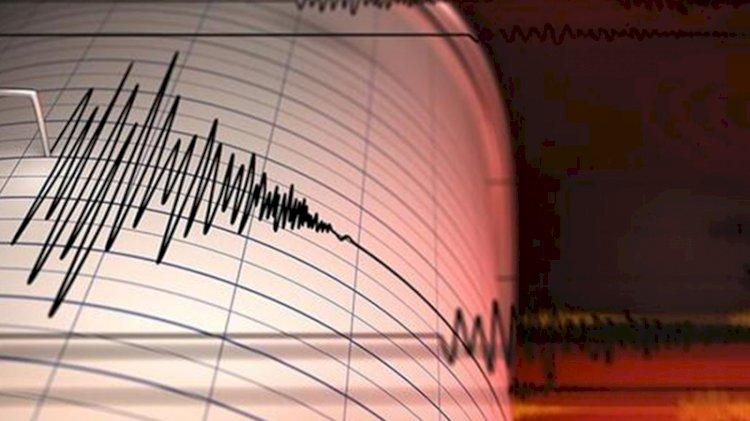 Yeni Zelanda'da 7.3'lük deprem: Tsunami gelebilir