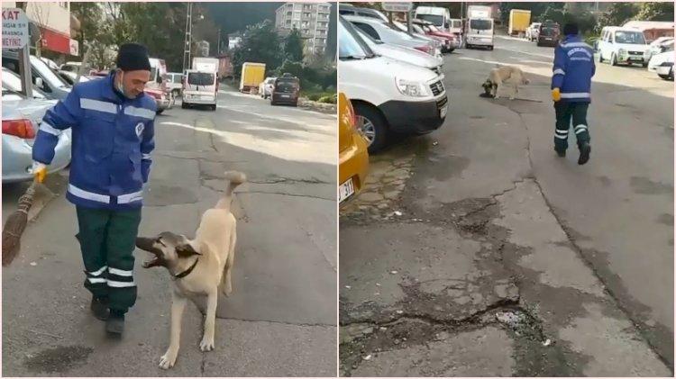 Temizlik işçisiyle köpeğin arasındaki 'süpürge' kavgası