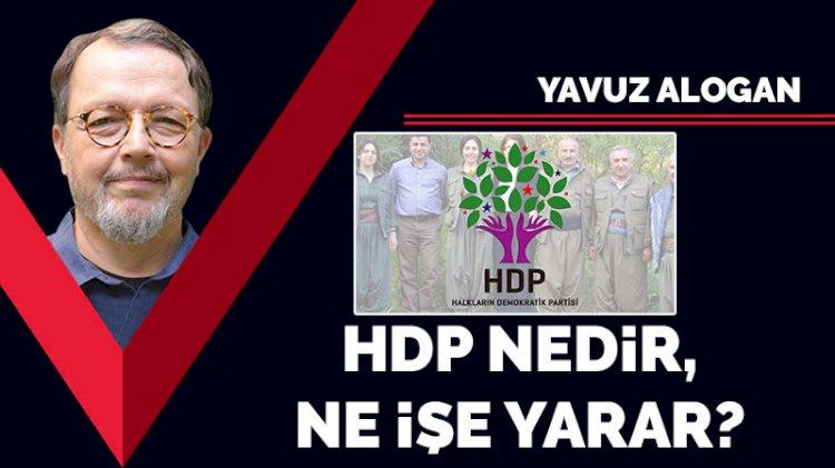 HDP nedir, ne işe yarar?