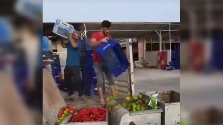 Üreticiler isyan etti: Tonlarca mahsulü çöpe döktüler!