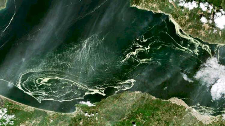 Uydudan Marmara Denizi'ni saran salya böyle görüntülendi