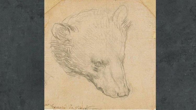 Dünyanın en pahalı ayısı
