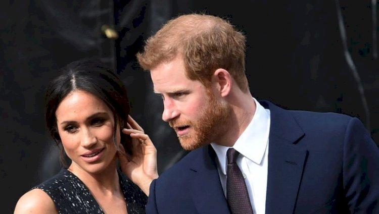 Prens Harry kraliyet hayatını 'hayvanat bahçesi'ne benzetti