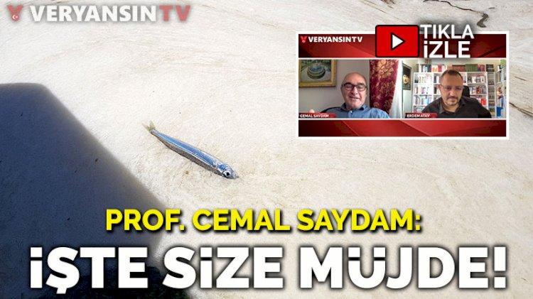 Prof. Cemal Saydam: İşte size müjde!