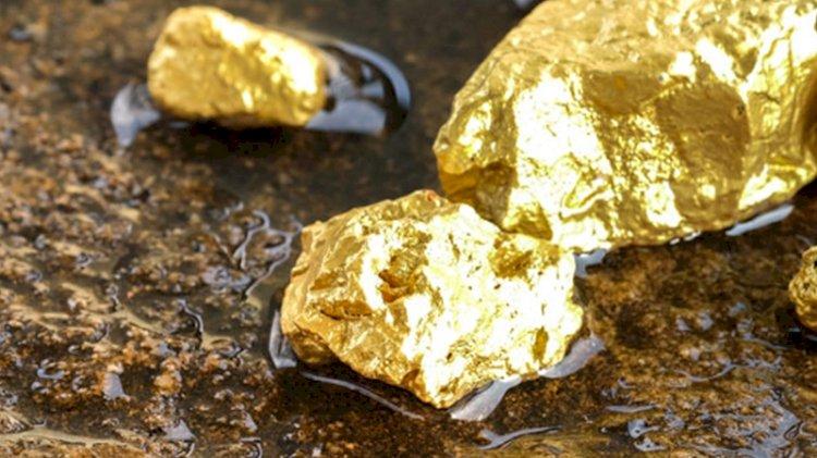 Ağrı'da 20 ton altın rezervi tespit edildi