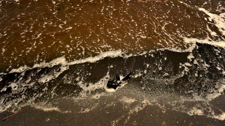 Sahil siyaha boyandı! 'Denize girmek intihar gibi'