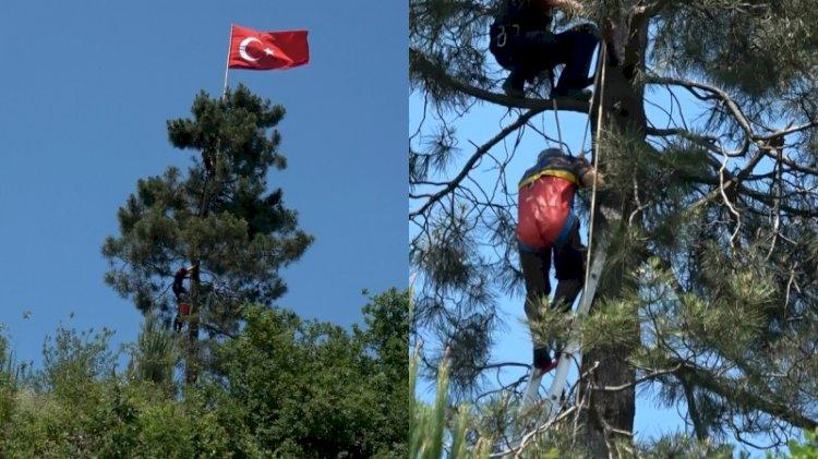 Yıpranan Türk bayrağını değiştirmek için çıktığı ağaçta mahsur kaldı