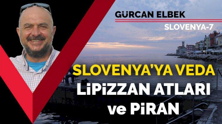 Slovenya'ya veda: Lipizzan atları ve Piran